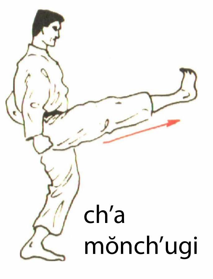 cha_momchugi