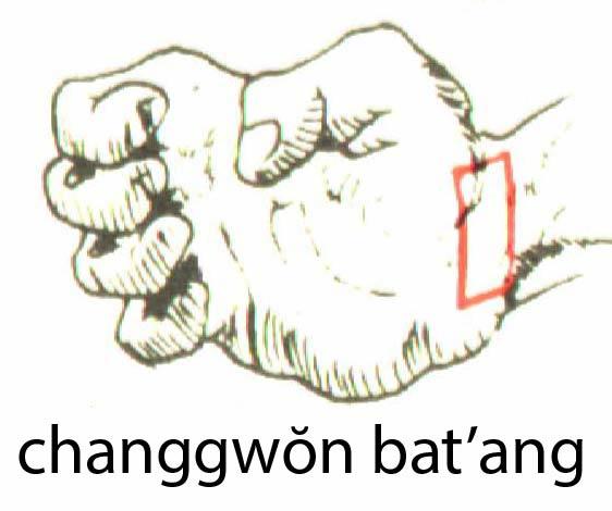 changgwombat_ang
