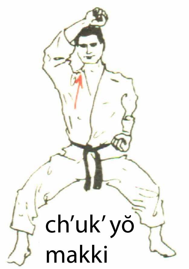 chukyo_makki