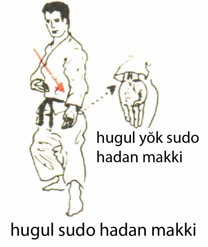 hugu_sudo_hadan_makki