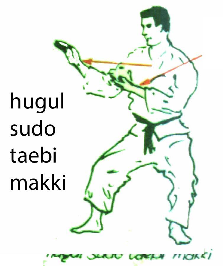 hugul_sudo_taebi_makki