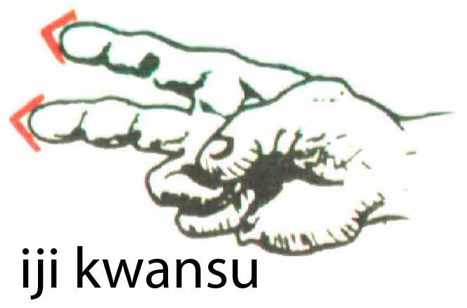 iji_kwansu
