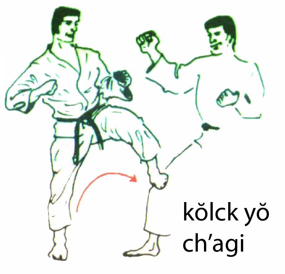kolch_yo_chagi