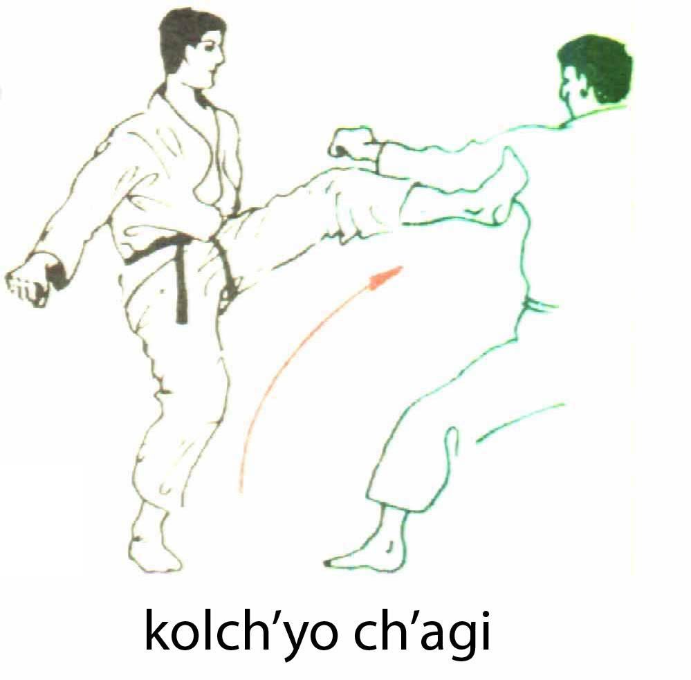 kolchyo_chagi