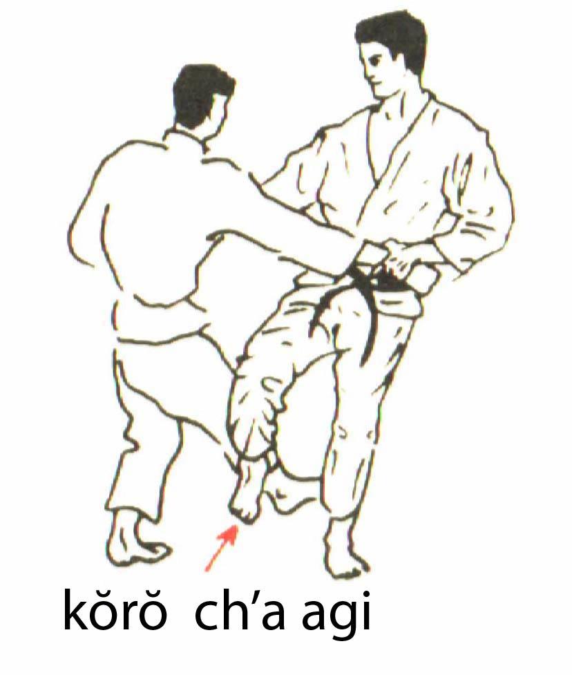 koro_cha_agi