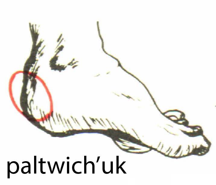 paltwich_uk