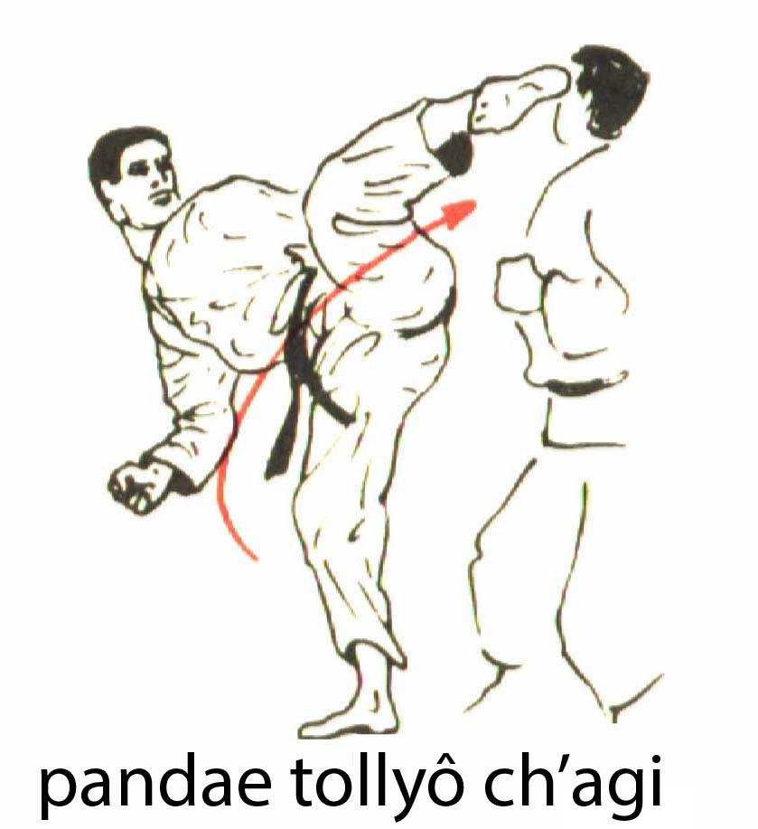 pandae_tollyo_chagi