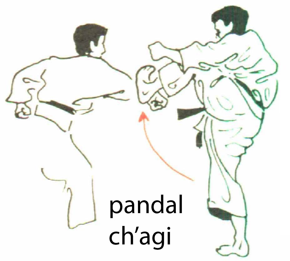 pandal_chagi