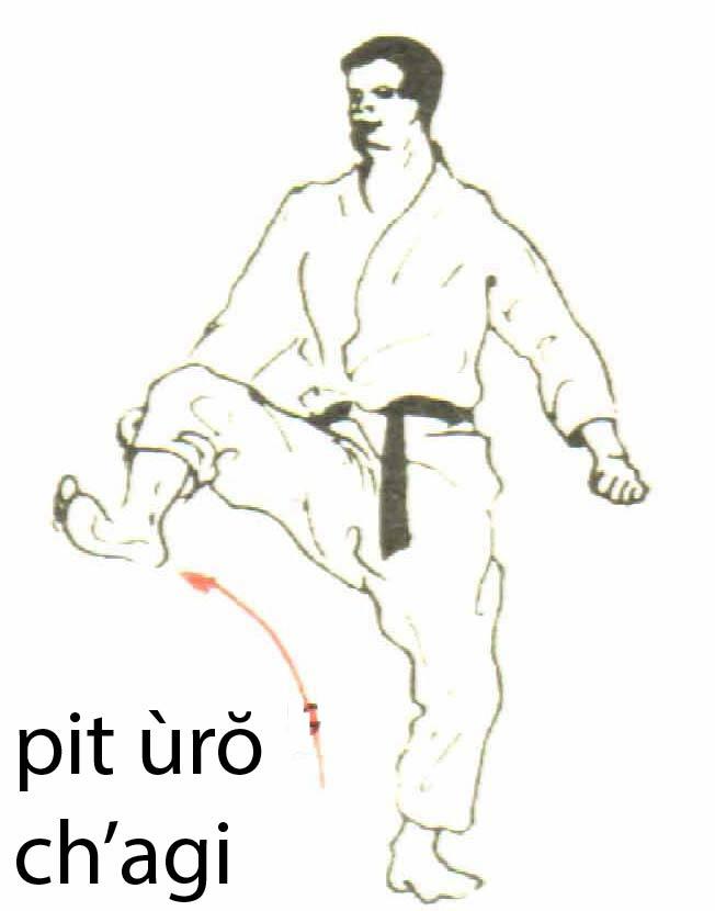 pit_uro_chagi