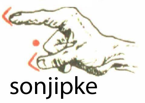 sonjipke