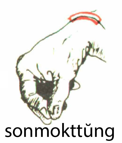 sonmokttung