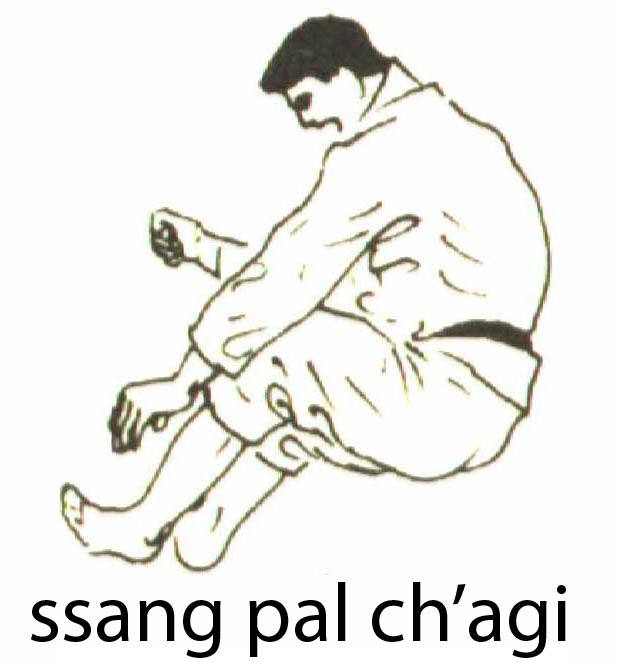 ssang_pal_chagi
