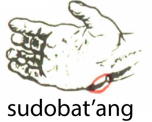 sudobat_ang