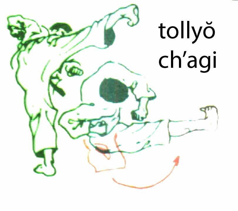 tollyo_chagi