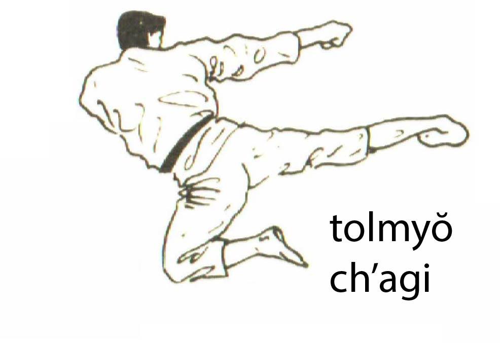 tolmyo_chagi