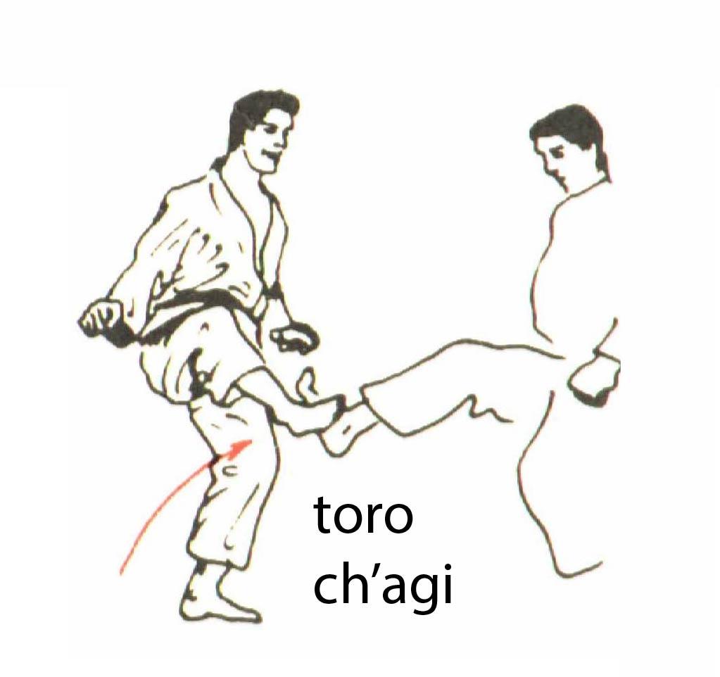 toro_chagi
