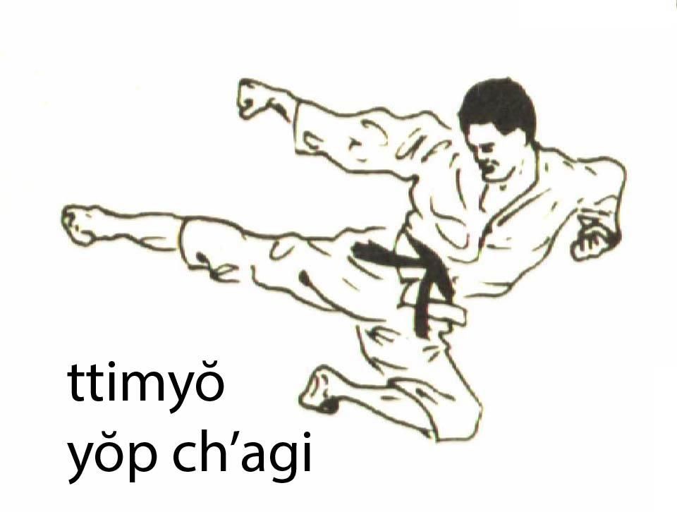 ttimyo_yop_chagi