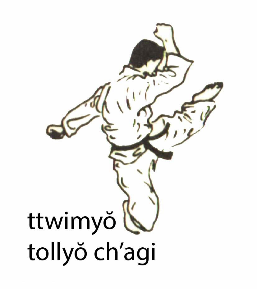 ttwimyo_bollyo_chagi