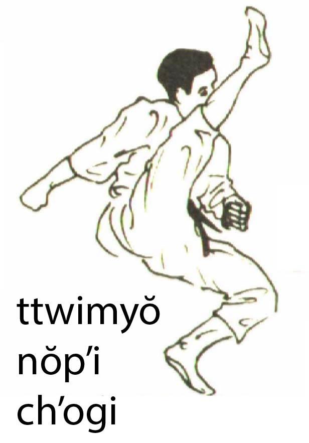 ttwimyo_nopi_chagi