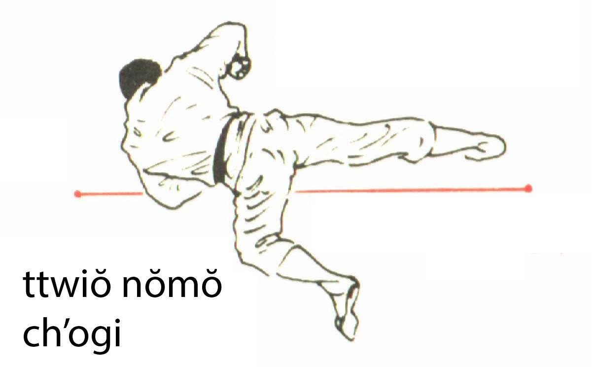ttwio_nomo_chagi