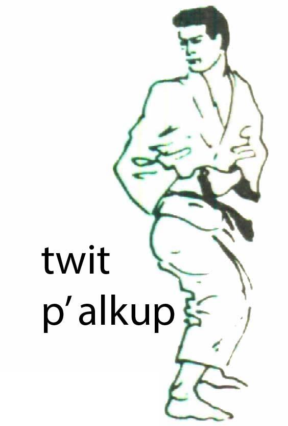 twit_palkup