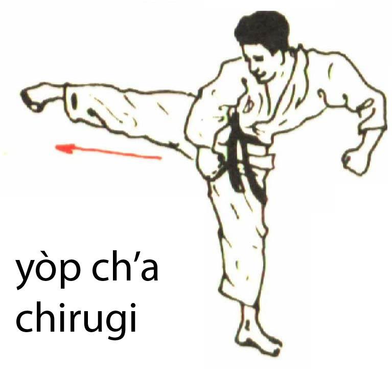 yop_cha_chirugi