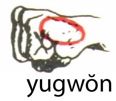 yugwon
